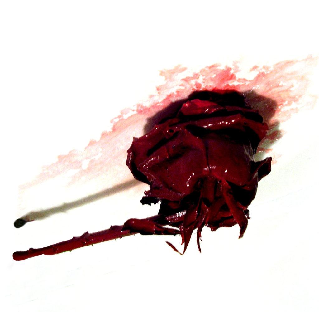 Fotografia rosa rossa dipinta di rosso