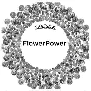 OPERE flowerPower stampa 29