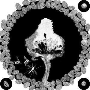 OPERE flowerPower stampa 17